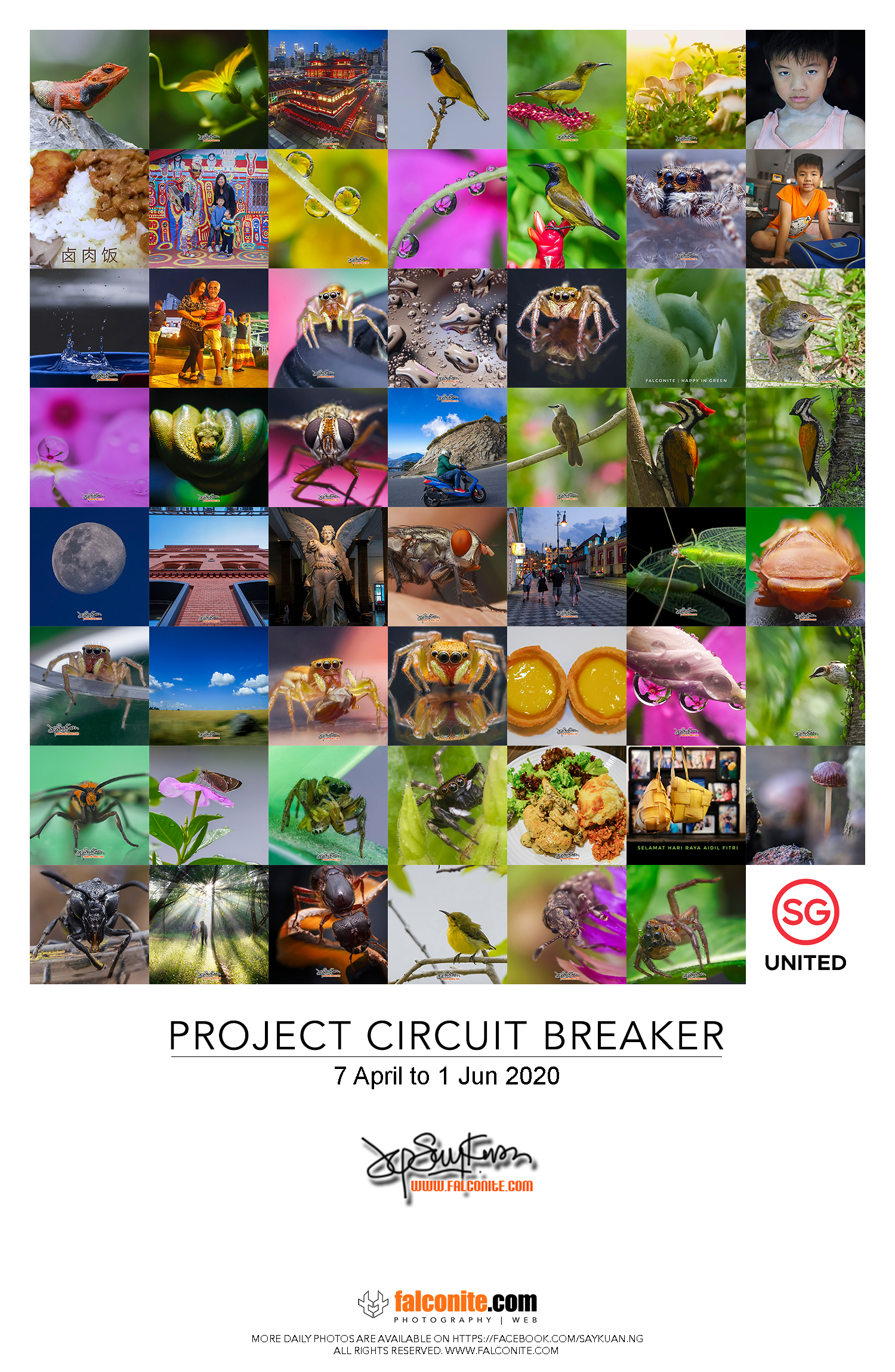 Collage of Project CB